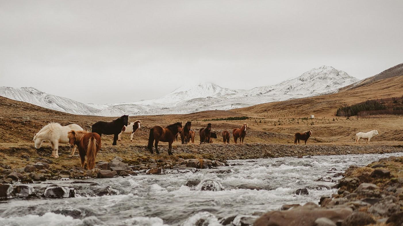 A&D Film ślubny na Islandii 3