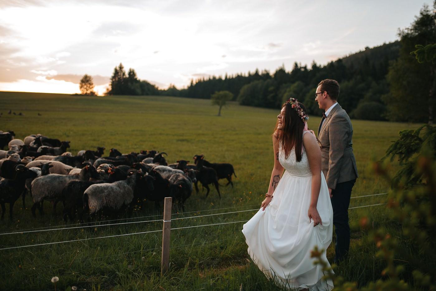 Dlaczego warto zatrudniać dwie różne firmy na Wasz ślub i wesele. 49